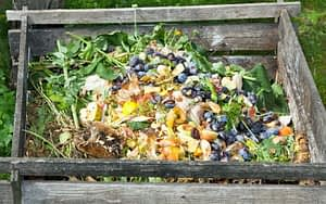 Compost bin with newly added material